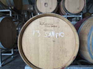 Orange Mountain 2013 Sangiovese...waiting patiently